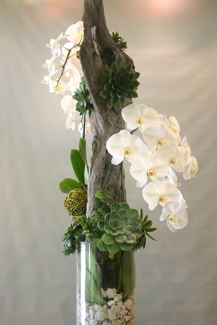 Orchid with succulents and driftwood 039 flickr photo - Arreglos florales artificiales modernos ...