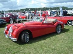 race car, automobile, jaguar xk120, jaguar xk140, vehicle, performance car, antique car, classic car, vintage car, land vehicle, luxury vehicle, sports car,