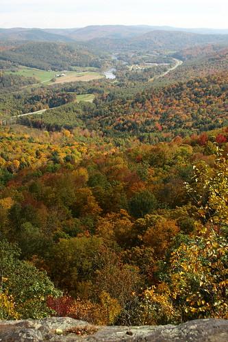 autumn trees fall woods vermont view foliage vt southroyalton kentsledge canon40d