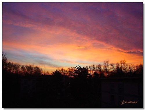 pink blue trees sky orange milan alberi clouds sunrise nuvole alba blu milano sony rosa cielo arancio silhouttes ghostbuster dsch9 vosplusbellesphotos gigi49