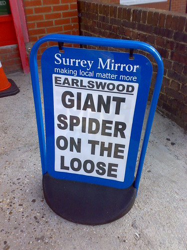 Earlswood - Giant Spider on the loose