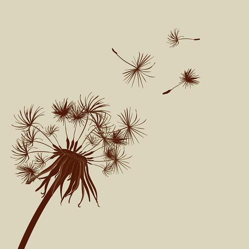 Dandelion by thenationalgrid