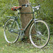 Raleigh Superbe_3597 by Corvid