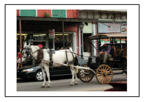 Carriage  French Quarter