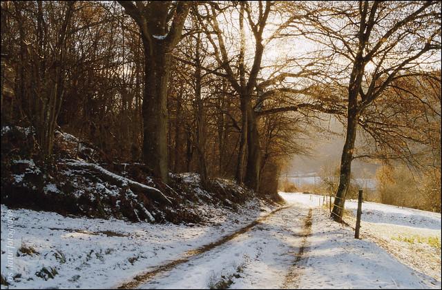 Wintermorgen (2)