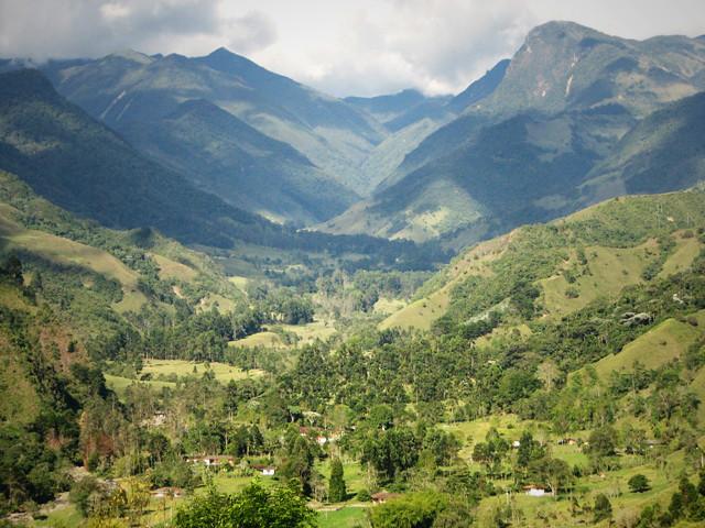 Imagen de la Vista panorámica del Valle de Cocora