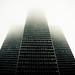 Brume - Fog (52 / 365)