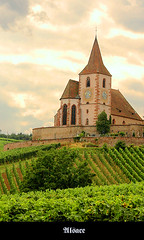Alsace - Black Forest - Rhein - Mosel