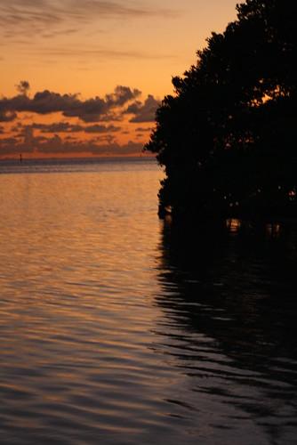 water florida atlantic eastcoast zoomedshoot