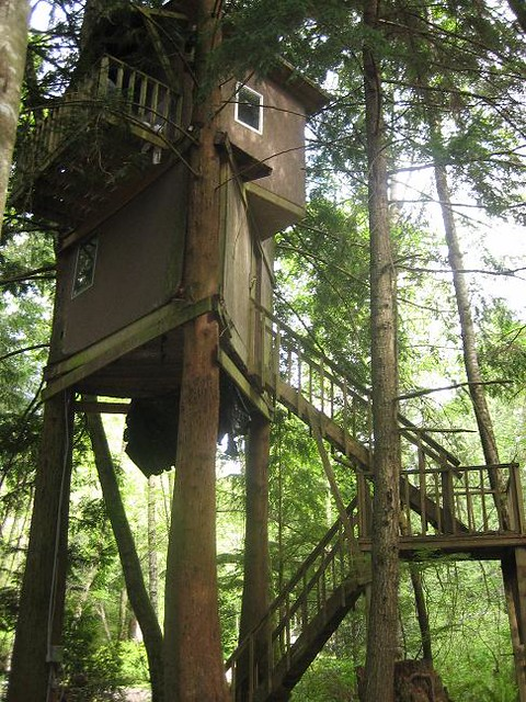 Ultimate Tree Houses A Gallery On Flickr
