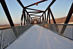 Footbridge across the North Saskatchewan River