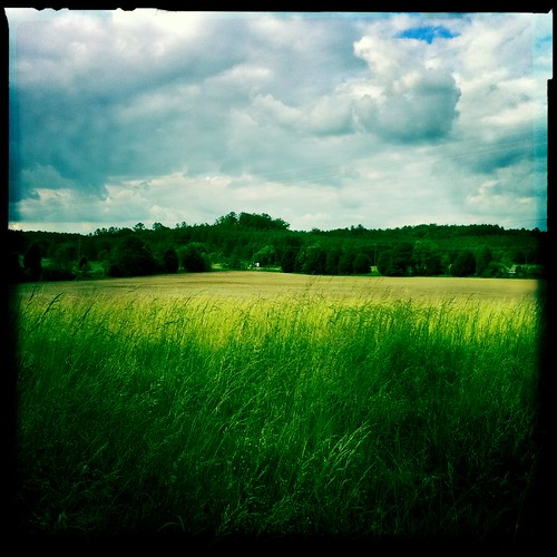 blankonoirfilm clouds field hipstamatic iphoneography johnslens landscape sky