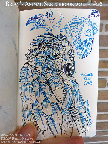 03-10-2014 #dailydrawing #animals #oakland #parrot