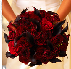 Burgundy Callas Black Magic Baccara Rose Bouquet Flickr