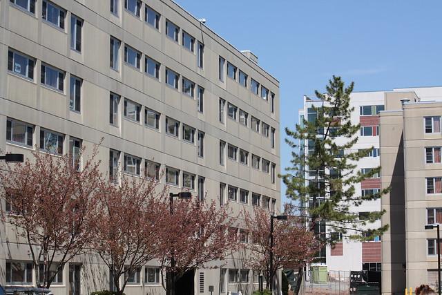 flickr kean universitys photostream