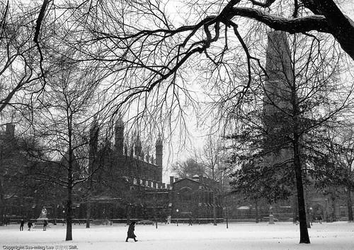Yale University Old Campus / 1996 / SML