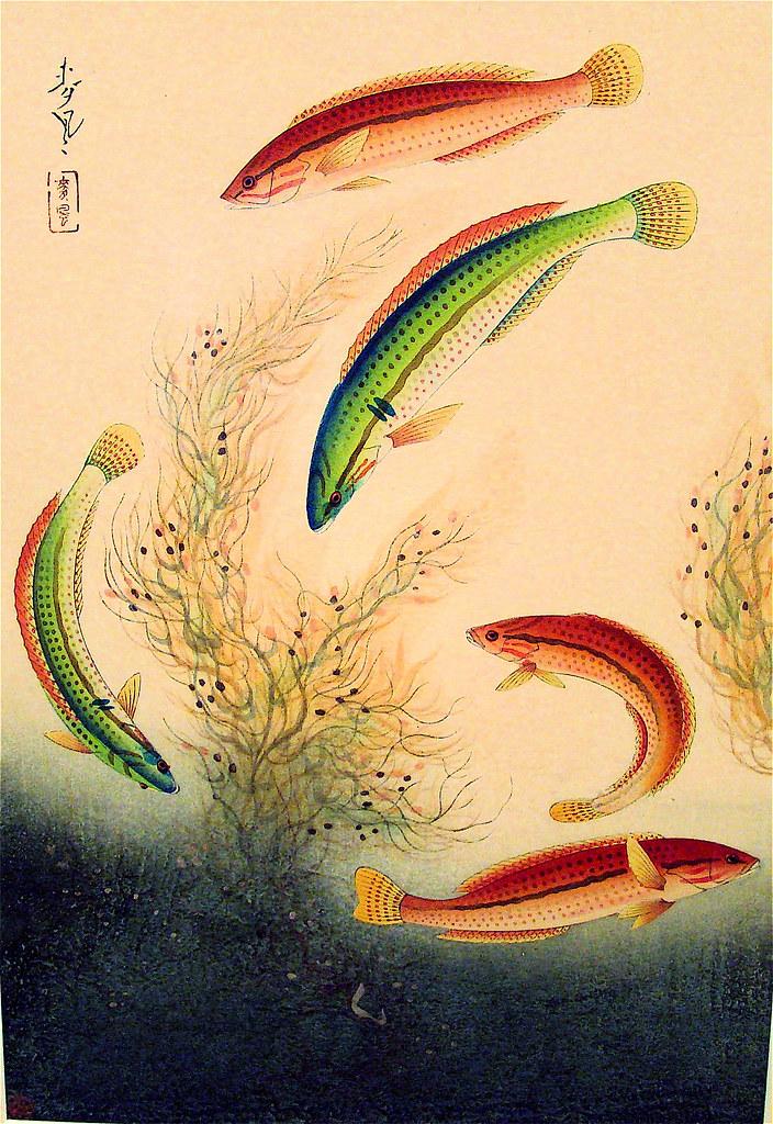 Ohno Bakufu Fish Block Print Flickr Photo Sharing