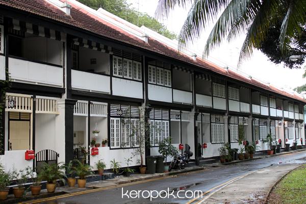 39 boring 39 singapore city photo monk 39 s hill terrace black for Terrace house singapore