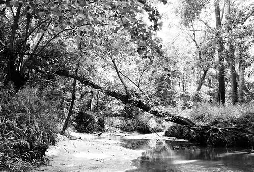 railroad train trestle bridge bnsf springcreek tomball harriscounty texas natureslight black white blackandwhite blackwhite bw b w pontist united states north america