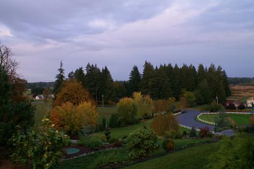 fall fallcolors