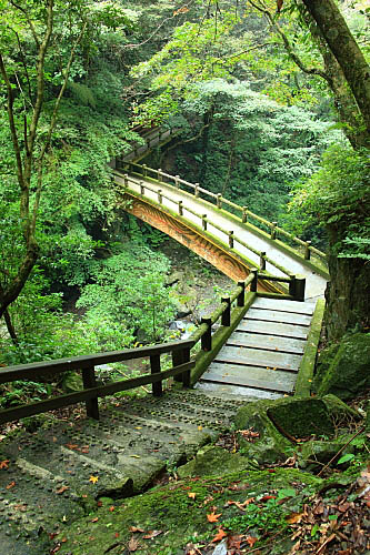 07J8滿月圓-楓香拱橋