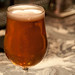 Pliny the Elder 005