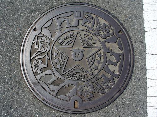 Sayo Hyogo manhole cover(兵庫県佐用町のマンホール)