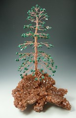 Color Pine Tree