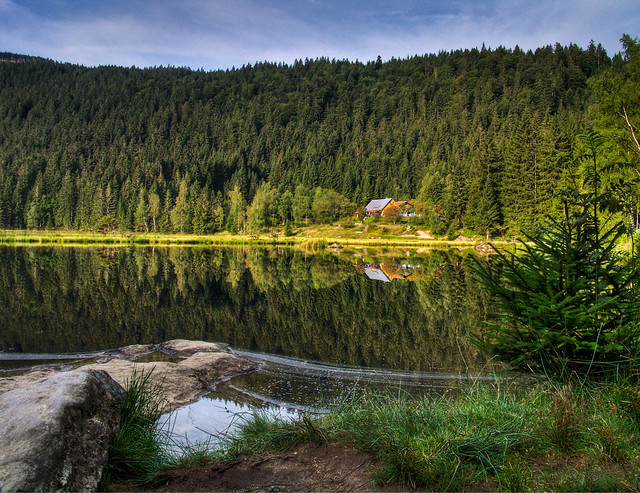 Small Lake Arber in Early Morning Light