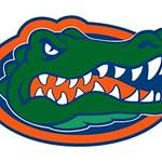 Florida gators photo