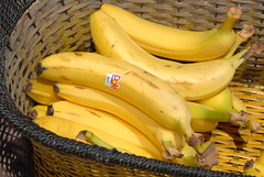 plant(0.0), vegetable(1.0), cooking plantain(1.0), banana(1.0), yellow(1.0), produce(1.0), fruit(1.0), food(1.0),
