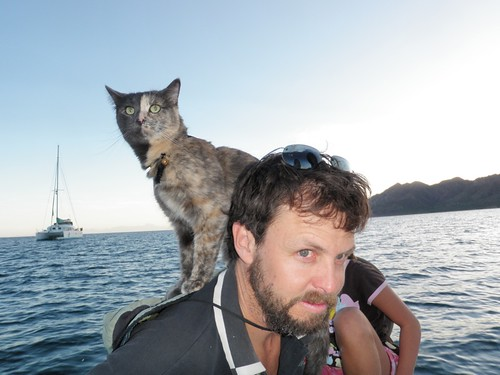 Our Boat Parrot is a Cat by toastfloats