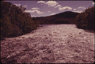 Androscoggin River near the Headwaters, Looking Downstream from the Bridge at Errol 06/1973