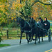 Small photo of Lancaster Amish