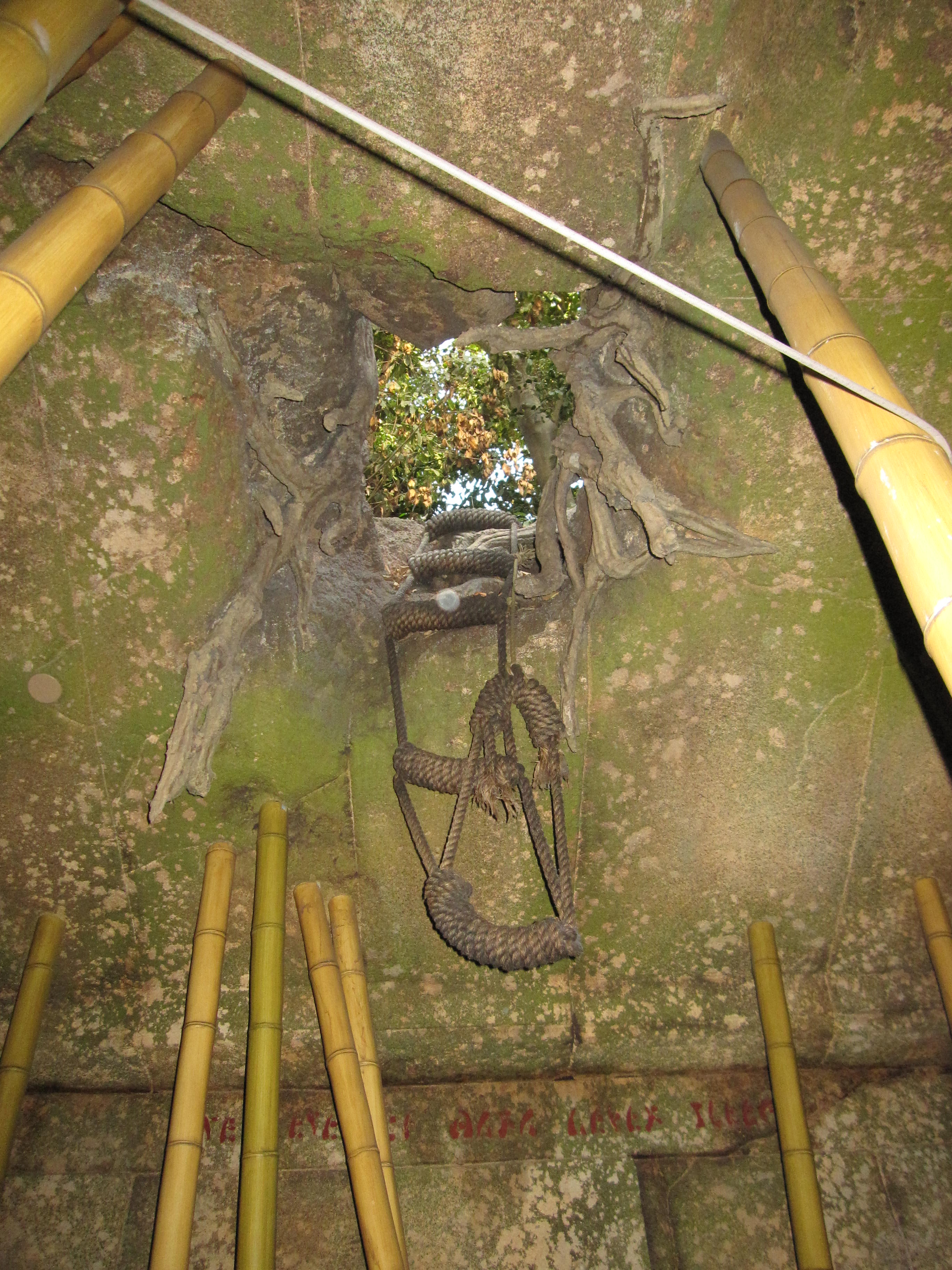 Rope ladder out of the Temple of the Forbidden Eye