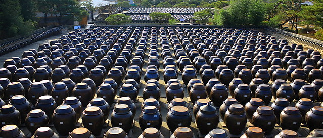 20091114-141924-Jars of Soy Sauce