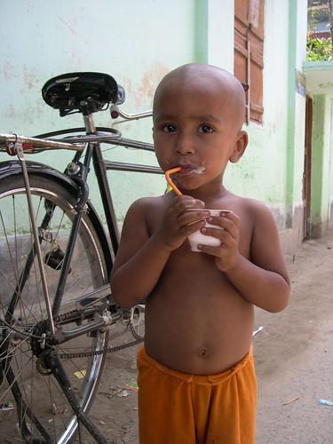 bangladesh yaourt doi bogra shoktidoi