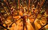Leonardo da Vinci - Mirror Chamber by krapzapper