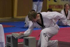 tang soo do(0.0), jujutsu(0.0), brazilian jiu-jitsu(0.0), hapkido(1.0), individual sports(1.0), contact sport(1.0), taekwondo(1.0), sports(1.0), combat sport(1.0), martial arts(1.0), karate(1.0), judo(1.0), japanese martial arts(1.0),