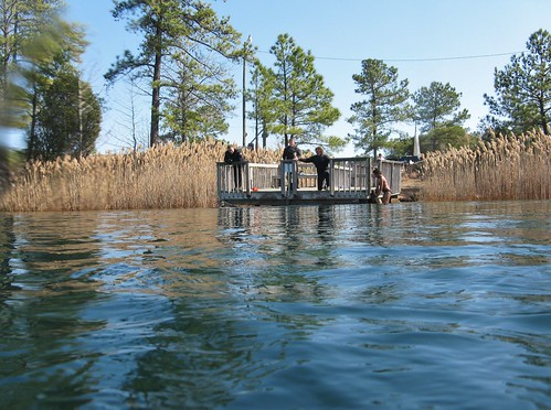 lake swimming dock divers northcarolina scuba diving surface cattails southeast wakeforest scubapark fantasylake fantasylakescubapark