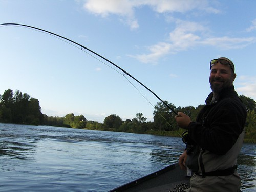 Eugene town run summer steelhead fishing stays hot the for Fishing eugene oregon