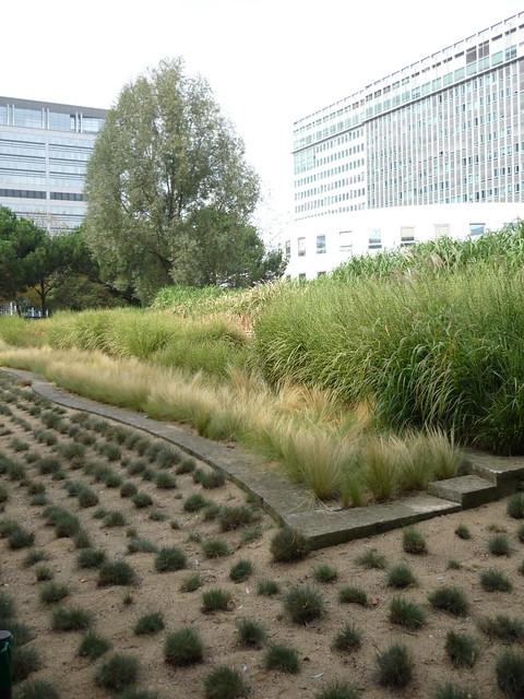 Flickr photo sharing for Jardin atlantique