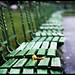 leaf on a bench