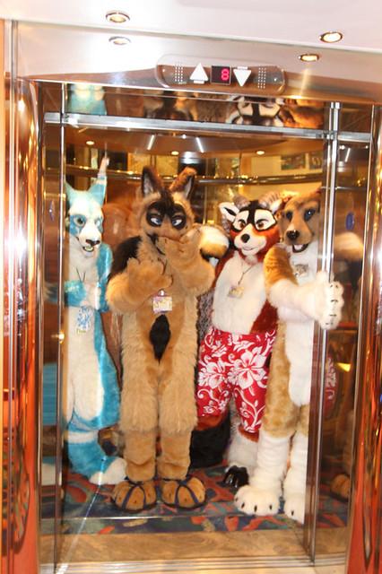 2009 Furry Cruise