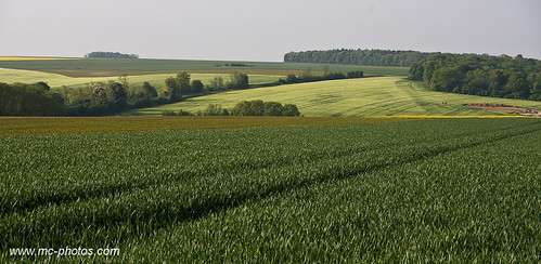 geotagged plateau plateaupicard picard222 geo:lat=49471086 geo:lon=2446716