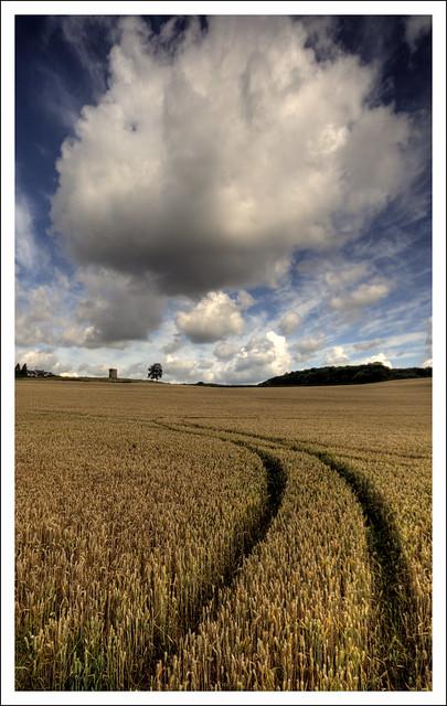 Towards Rogiet Windmill (1)