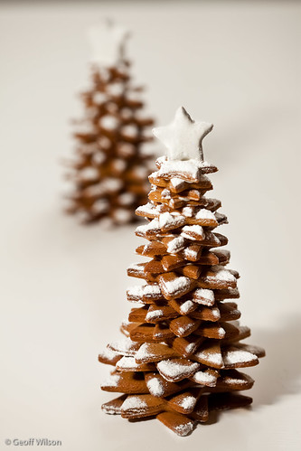 Gingerbread Christmas Trees by gmwils