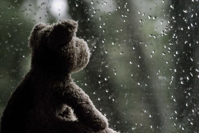 Day 227: Rain