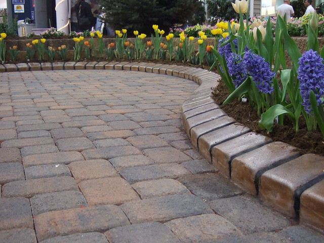 Paver Patio With A Better Edge Edging Flickr Photo