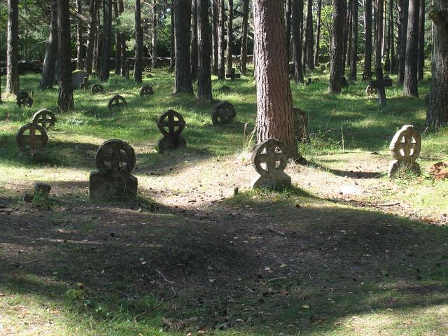 Rõngasristid Vormsi surnuaias